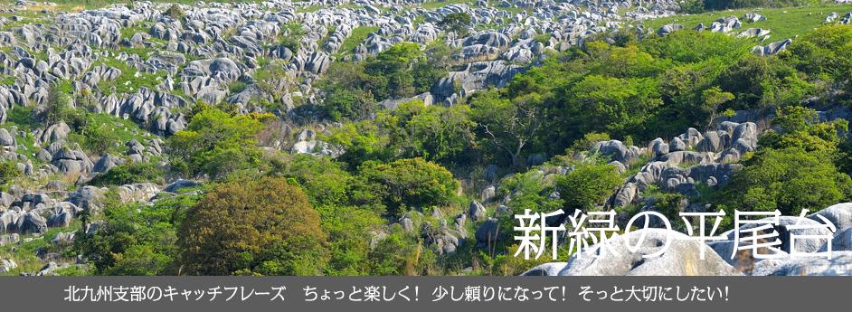 新緑の平尾台 北九州支部のキャッチフレーズ ちょっと楽しく! 少し頼りになって! そっと大切にしたい!